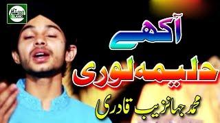 Shahbaz Qamar Fareedi Naat Mp3 Download Haleema Lori Dendi