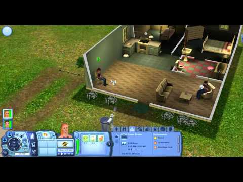 How To Use Cheats On The Sims 3- PC (HD)