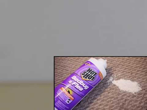 DIY Bed Bug Treatments | Bed Bug Removal Worcester Ma. USA | Bug Bully Pest Control Grafton, Ma.