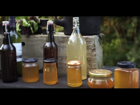 How to make Elderflower Cordial/Champagne/Jam/ (Is this the best cordial in the world?! (Ever)