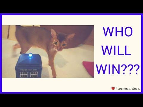 Cat VS. TARDIS!!!