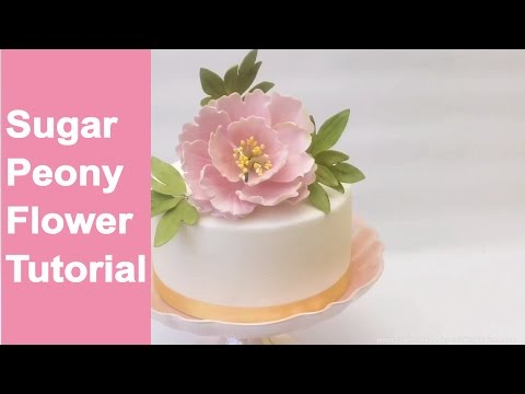 SUGAR FLOWERS: How to make open sugar peony flower and leaves tutorial by Busi Christian-Iwuagwu