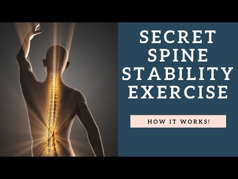 SECRET Spine Stability Exercise To Fix Back Pain   How To Workout The Multifidus Muscle