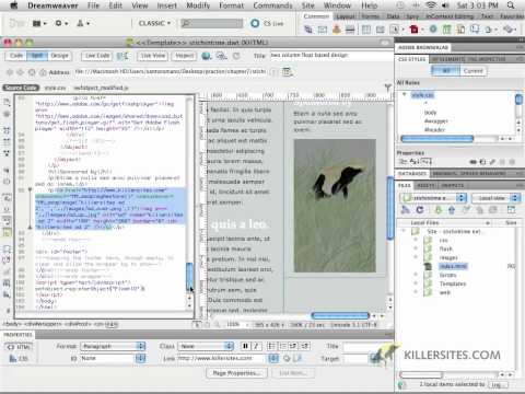 Dreamweaver CS5 - Adding Javascript