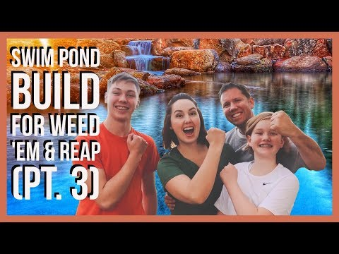 Building A Natural Swimming Pond For Weed 'Em and Reap - Organic Pool VLOG 039