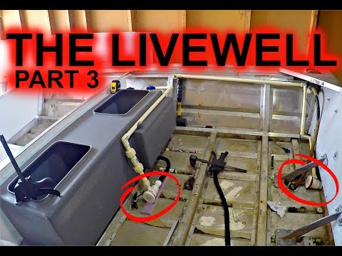 The Livewell Part 3