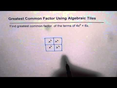 Find Greatest Common Factor With Algebra Tiles