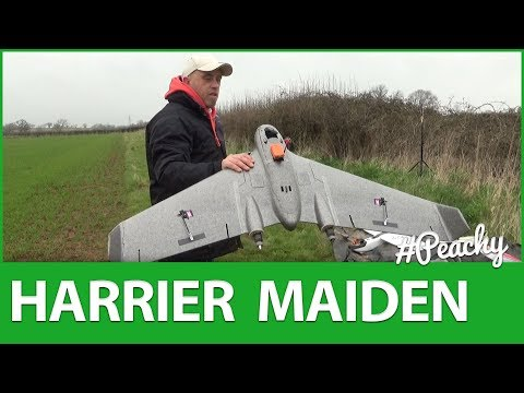 Reptile Harrier S1100 Maiden Flight & Overview