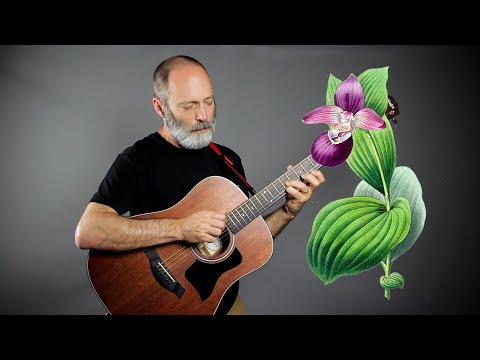 Wild Orchids Meet Ambient Baritone Guitar | Beauty!