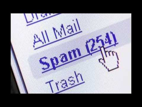 search by email now with a reverse email search