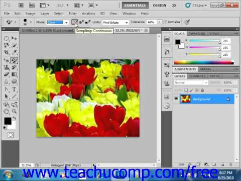 Photoshop CS5 Tutorial The Color Replacement Tool Adobe Training Lesson 5.5