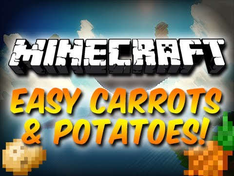Minecraft: EASY CARROTS AND POTATOES!