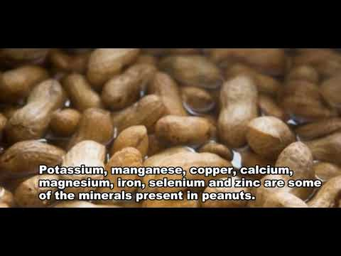 Peanut  (Live better feel)