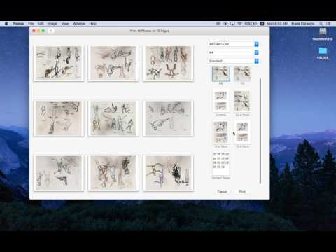 How to Save a Contact Sheet in Photos (Mac)