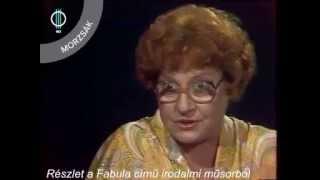 Janikovszky Éva: A Lemez Két Oldala (tábori Nóra)