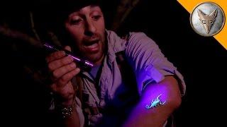 Download The Deadliest Scorpion in America! (Part 2) Video