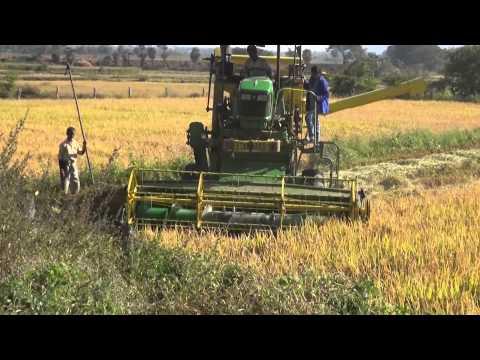 PADDY-RICE-CUTTING MACHINE-CROP HARVESTING