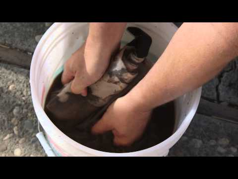 How to Make Liquid Fertilizer for a Hydroponics System : Hooked on 'Ponics