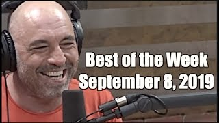 Best of the Week - September 8, 2019 - Joe Rogan Experience