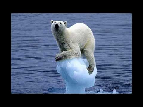 Global Warming Narrated Photo Essay