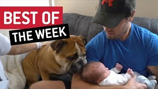 BEST OF THE WEEK - Nice To Meet You | JukinVideo