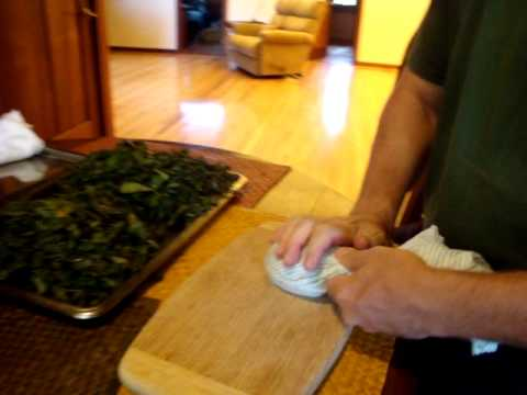 Hand-processing of tea leaves