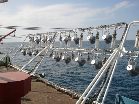 The video of Led fishing light test in ocean  2