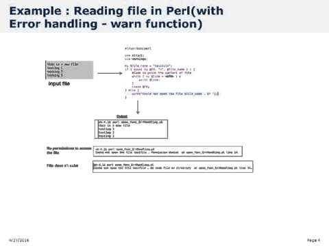 Perl File Handling   read file
