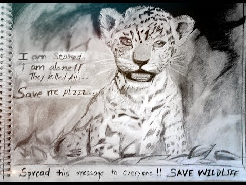 Poster on wildlife conservation. |save wildlife posters with slogan|