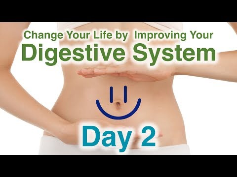 Challenge - Digestion ||  Day 2 - Intermittent Fasting