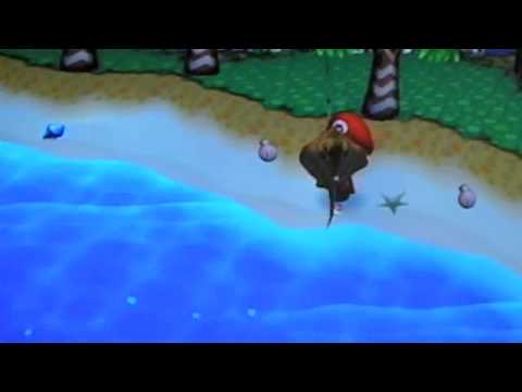Animal Crossing City Folk: Catching Ray