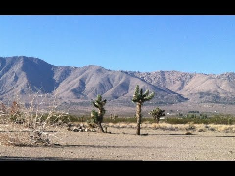 5 Residential Acres Just North of Adelanto CA. for sale. $14,599