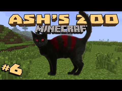 Minecraft: Ash's Zoo - #6 - Fish for cats