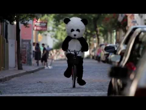 Action Panda | Official Trailer - Extreme Sports Panda