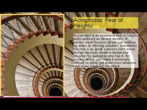 Phobias What Are You Afraid Of?