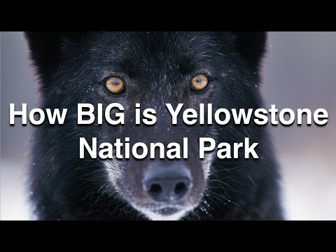 How BIG is Yellowstone National Park