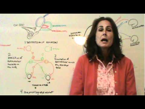 Louise - Dizziness, Nausea, Parkinson's