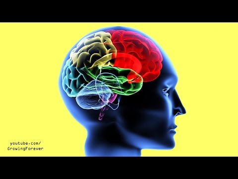 How To Use Your Brain and Subconscious Mind To Unlock Your Success Power. Law of Attraction