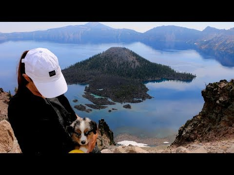 17] PUPPY SURPRISE: A New Crew Member | Abandon Comfort – USA Road Trip & Boondocking
