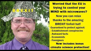 Moron of the Week: Brexit loon Wayne from Chelmsford doesn
