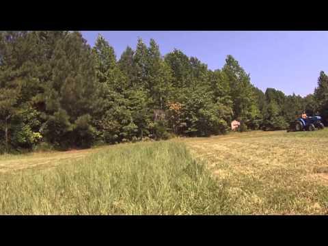 Virginia Hunting Property Management