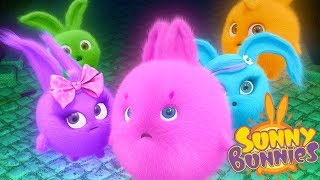 Cartoons for Children | Sunny Bunnies- MIDNIGHT MYSTERY| SUNNY BUNNIES | Funny Cartoons For Children