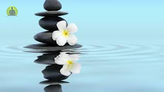 1 Hour Deep Healing Music Relax Mind Body & Soul, Meditation Music, Soothing Relaxing Music