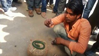 MAGIC FROM ROAD SIDE BIKANER | INDIAN STREET MAGIC