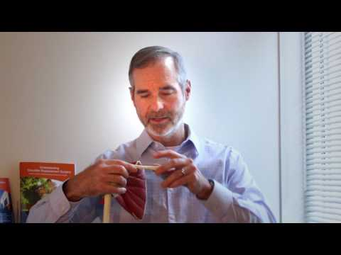 Do Clavicle Fractures Require Surgery? | William Silver, MD | EmergeOrtho | Durham, NC