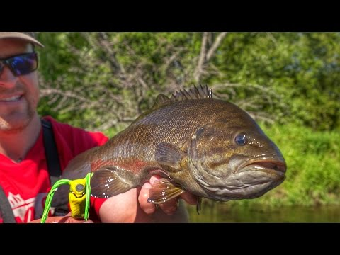INSANE River Bass Fishing Using Frog Lures!