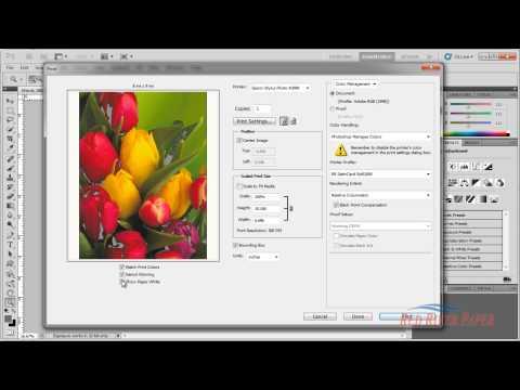 How to use ICC Color Printer Profiles Photoshop CS5 Epson