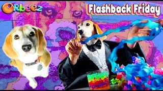 The Funniest Orbeez Dog Videos with Orbeez Girls!   Official Orbeez