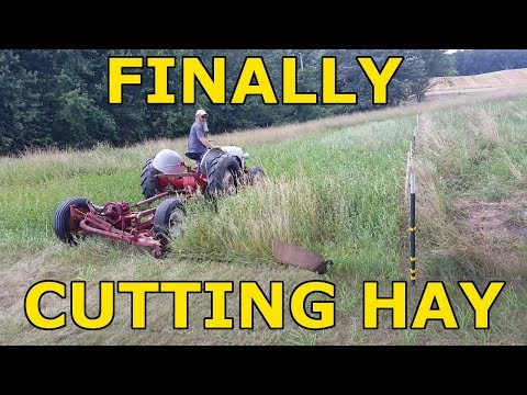 Finally Got Our Hay Field Cut