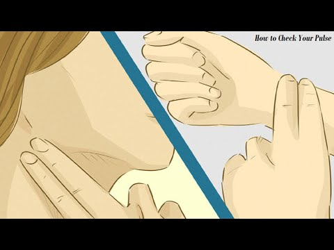 How to Check Your Pulse